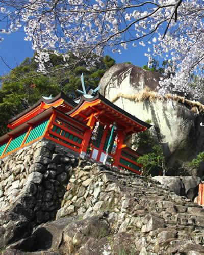 來關西玩錯過會捶心肝的世界遺產「熊野古道」