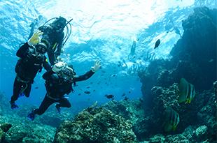 沖繩青之洞窟浮潛與泛舟體驗