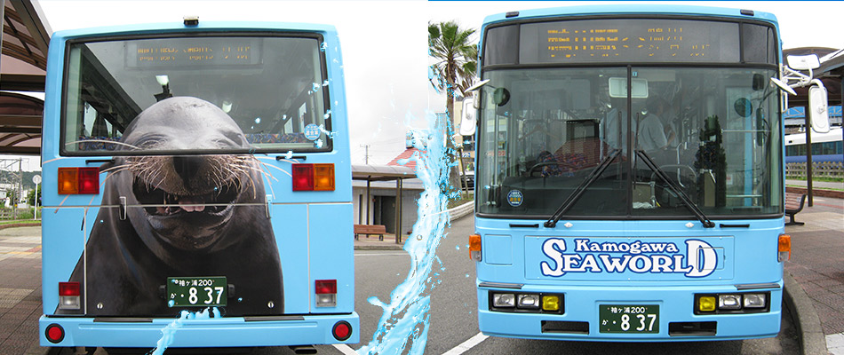 鴨川海洋世界 免費接駁巴士<br><small>JR安馬鴨川站 鴨川海洋世界約5分鐘</small>